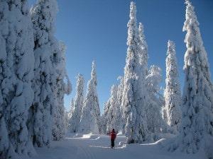 Тури у Фінляндію