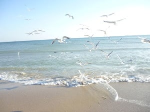 vidpovhunok na mori v ukraini