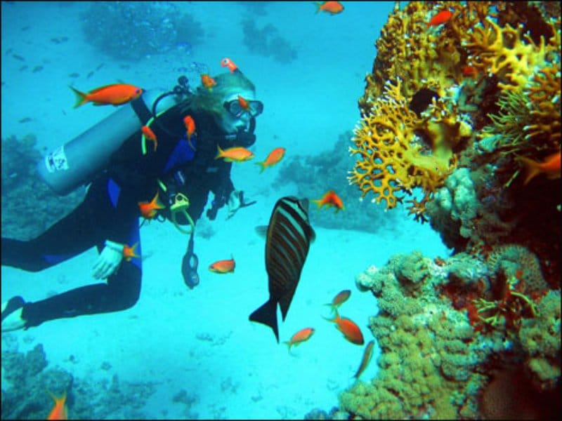 Основні туристичні місця Єгипту - Червоне море