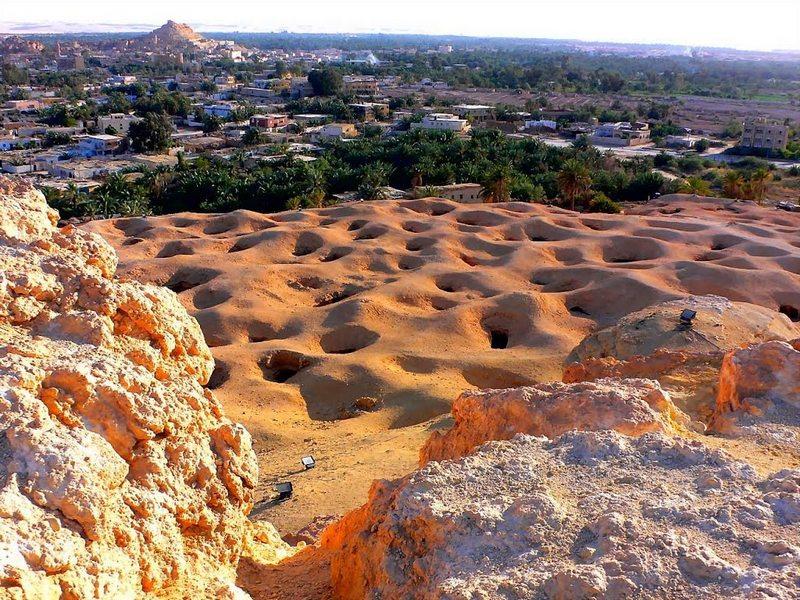 Основні туристичні місця Єгипту - Оазис