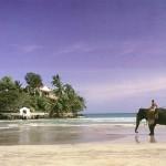 srilanka_fabrica_10_1